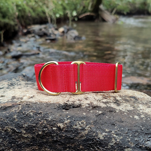 "1.5"" Standard Collar in Red Webbing"