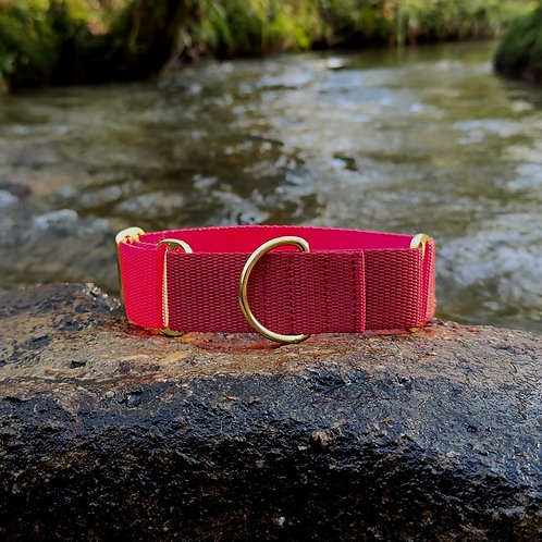 """1.5"""" Martingale Collar in Red Webbing"""