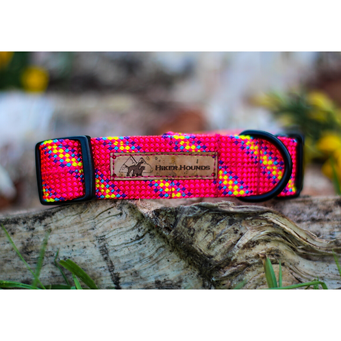Explore Dog Collar Pink