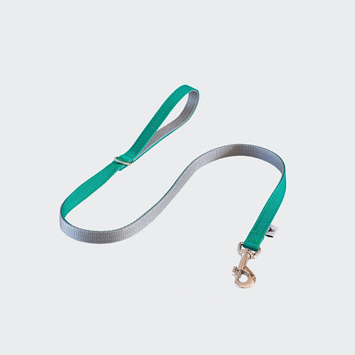 Pointy Faces Dog Lead Leash Green