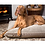 Extra Large Memory Foam Dog Bed UK