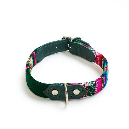 Inca Holly - Dog Collar