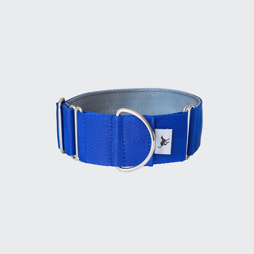 Greyhound, whippet lurcher collar blue. Pointy Faces