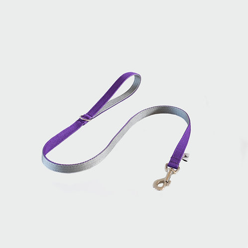 Pointy Faces Dog Lead Purple