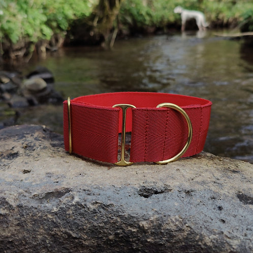 "2"" Standard Collar in Burgundy Webbing"