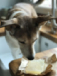 Pointy Faces Organic Dog Shampoo Bar