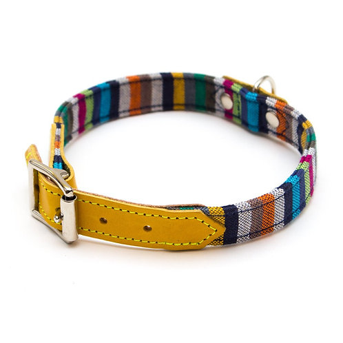 Dog Collar striped and yellow. Handmade in the UK. Pointy Faces