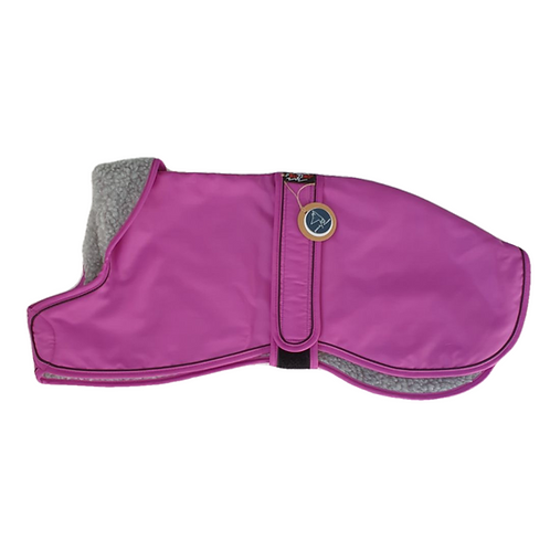 Italian Greyhound winter coat pink