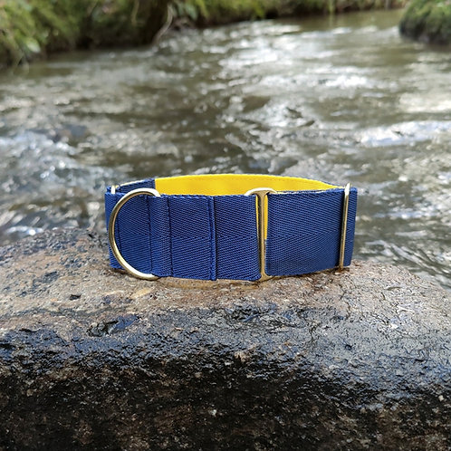 2 Inch Martingale Collar for Greyhound Lurcher Saluki in Blue and Yellow