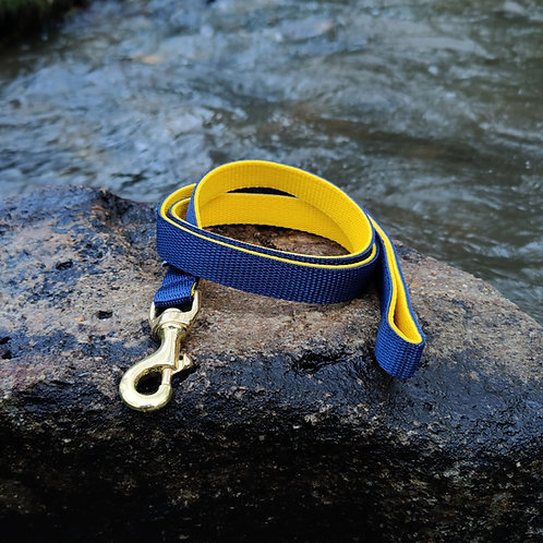 Lead in Navy and Yellow