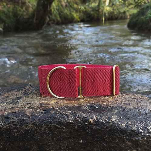"2"" Standard Collar in Burgundy Webbing"