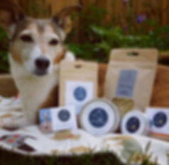 Pointy Faces Organic Dog Grooming Products