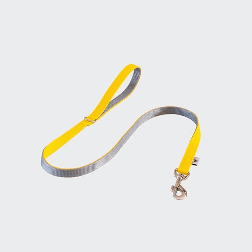 Dog lead yellow. Pointy Faces