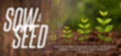 Redeem Sow A Seed Banner.png