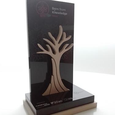 Troféu personalizado
