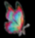 vlinder 2.png