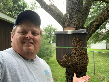 Swarm box catch