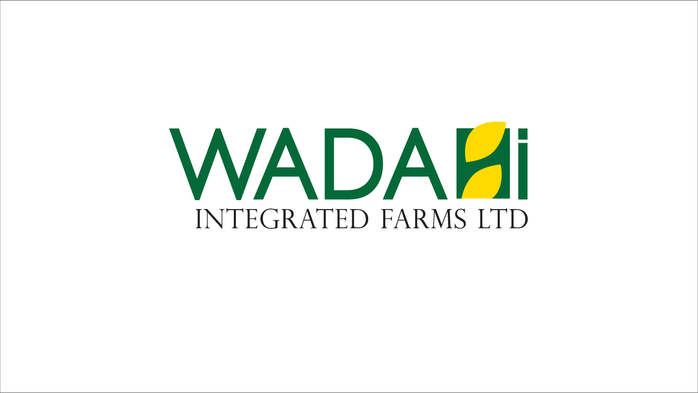 wadahi Branding Mock-up-01.png