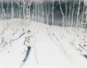 Oh-Man-Chul-Birch,-44-x-81cm,-White-Porc