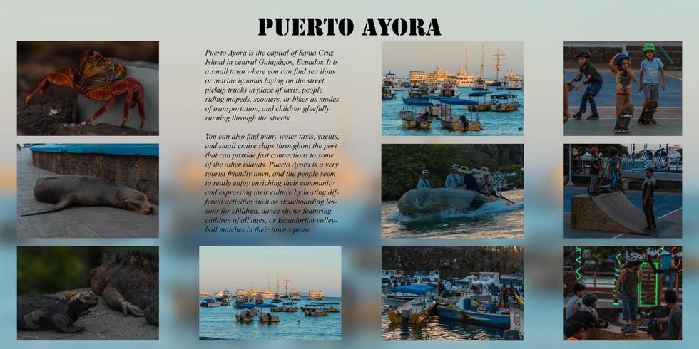 Puerto Ayora pg1