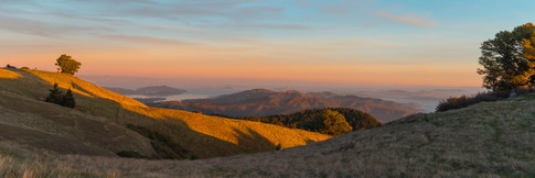 Mt. Tamalpais_41.jpg