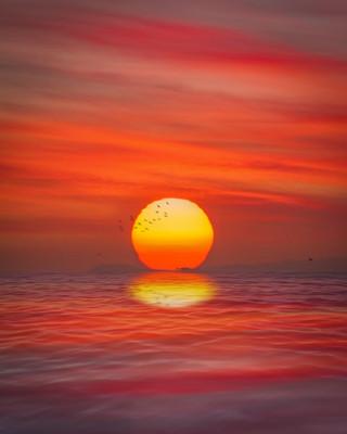 Venice Sunset 10:24:20 v4.jpg