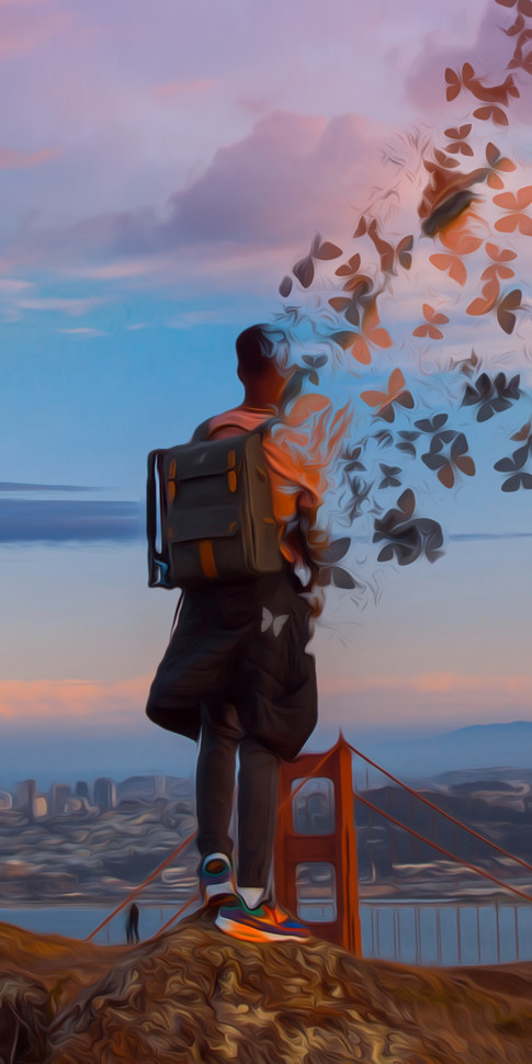 SF Butterfly Oil Painting.jpg