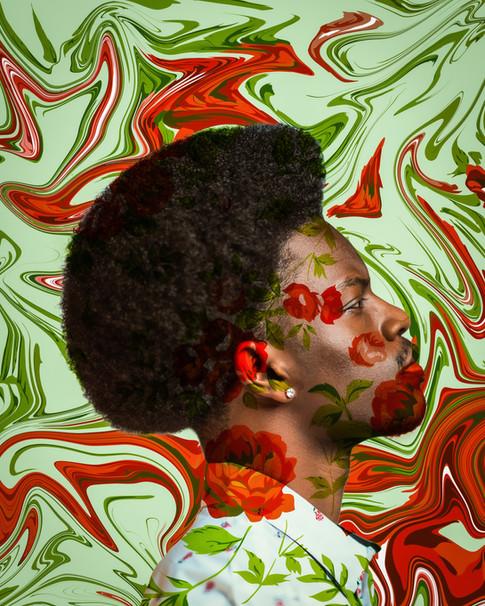 Flower Boy Liquify.jpg
