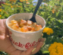 Mac and Cheese in Cup