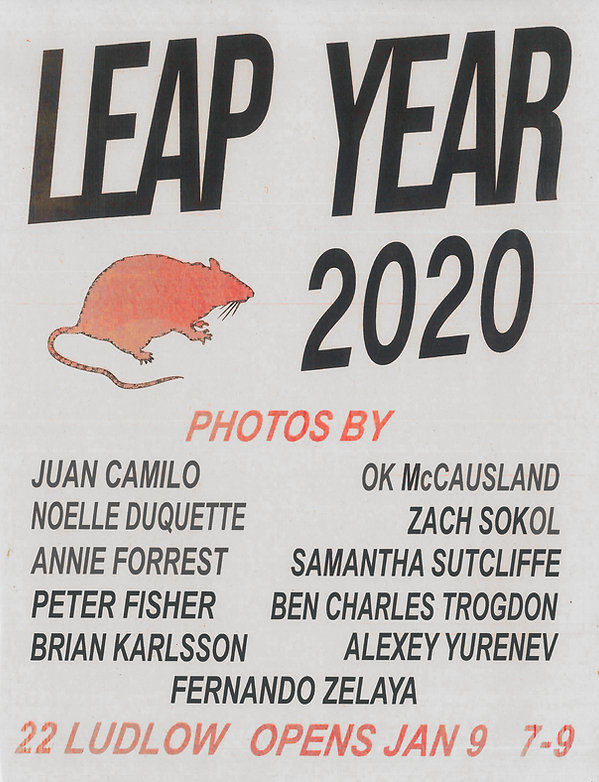 leap-year-exhibition-poster-2020