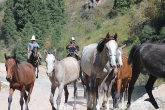 Paaren in Kirgizië dichtbij.jpeg