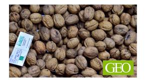 Moins de viande, plus de noix : un régime bon pour votre santé et celle de la planète - GEO