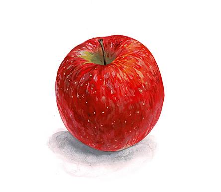 リンゴ.jpeg
