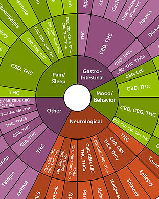 circle strains.jpg