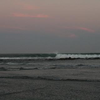 Baja Surf Camp