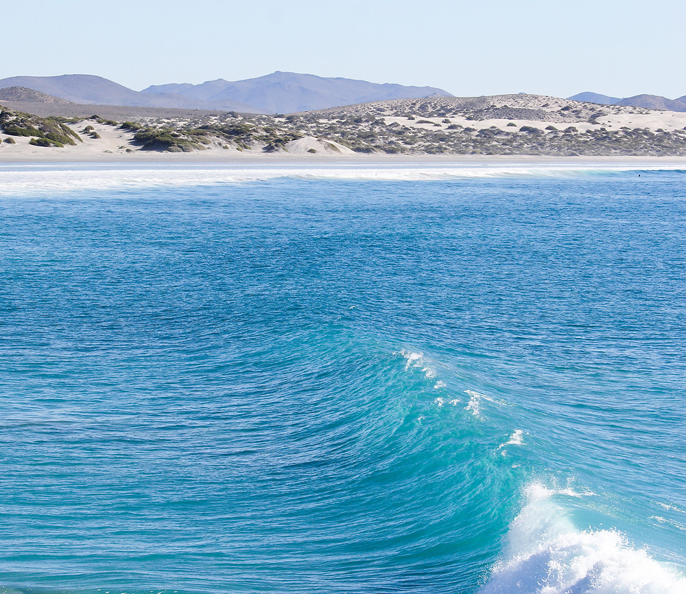 Hurricane Rosa Baja California Surf