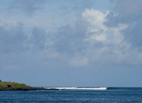 NEXT TRIP | MAY 04 - 11 Galapagos Islands Surf Trips