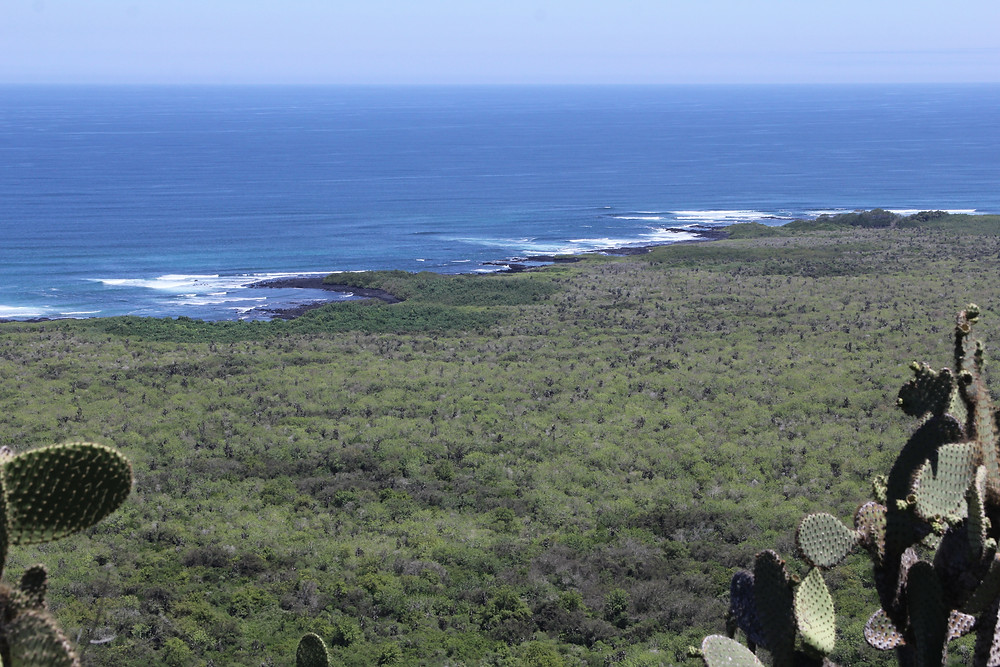Galapagos Islands Surf Trip | 4x4 Surf Tours
