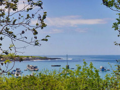 4x4SurfTours Galapagos couple suite acco