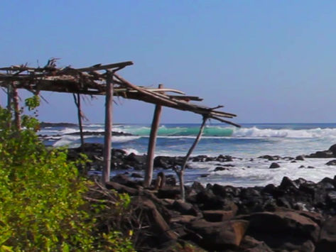 SALE | MARCH 2020 GALAPAGOS SURF TRIPS