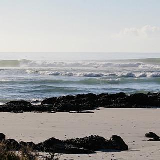 Baja California Surfing