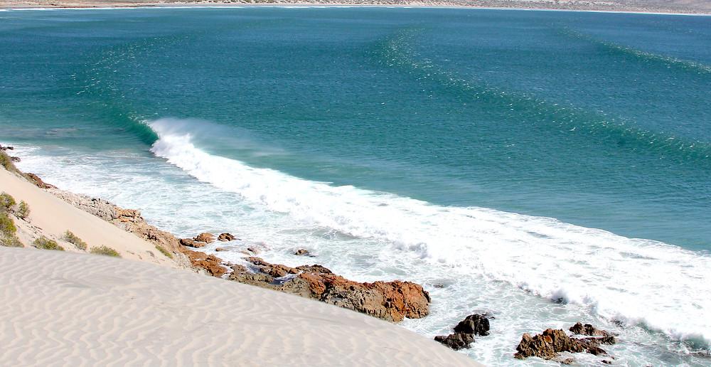 Baja California Surf Tours