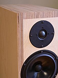 floor standing speakers. High-end speakers