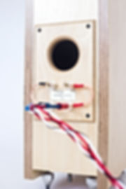 Translator rear panel, Baltic birch ply speakers, 1st order crossovers, hi end speakers,audiophile speakers,