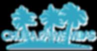 CHUÍBA PALMS BEACH VILLAS - LOGO - GOTOEMBA - R&D