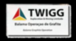 PAINEL EXTERIOR (245X122cm) TWIGG - GOTOPEMBA - R&D
