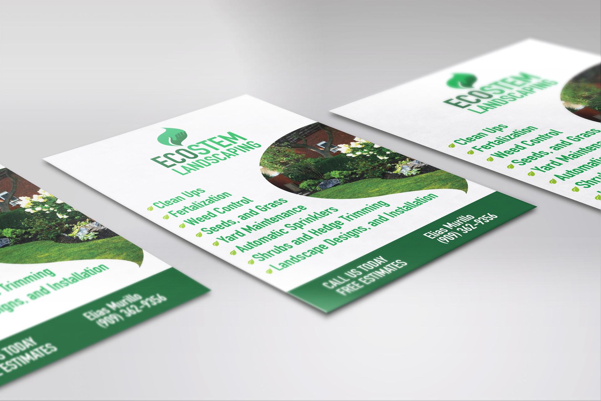 Ecostem flyer design