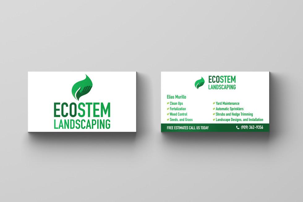 Ecostem Business card design