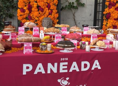 Paneada Santa Clara 2018