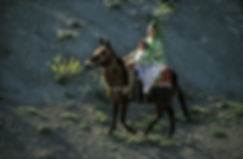 Une femme et son enfant sur une mule